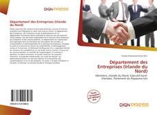 Département des Entreprises (Irlande du Nord)的封面