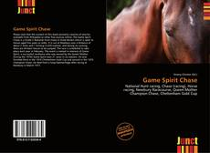 Bookcover of Game Spirit Chase