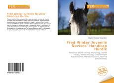 Bookcover of Fred Winter Juvenile Novices' Handicap Hurdle
