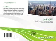 Bookcover of Crieff Hydro