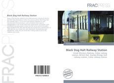 Black Dog Halt Railway Station kitap kapağı