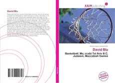 Bookcover of David Blu