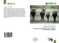 Bookcover of Juan A. Rivero