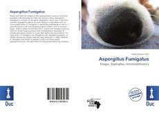 Bookcover of Aspergillus Fumigatus