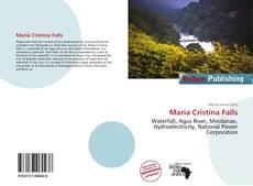 Maria Cristina Falls kitap kapağı