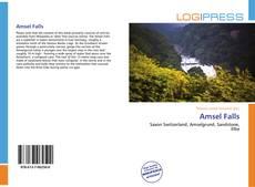 Portada del libro de Amsel Falls