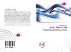 Bookcover of João Figueiredo