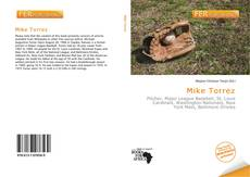 Bookcover of Mike Torrez