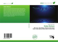 Bookcover of Gabe Nelson