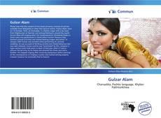 Bookcover of Gulzar Alam