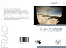 Capa do livro de All Nippon Airways Flight 58
