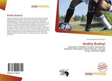 Buchcover von Andriy Budnyi