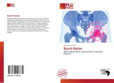 Bookcover of Burst Noise