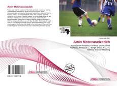 Bookcover of Amin Motevaselzadeh