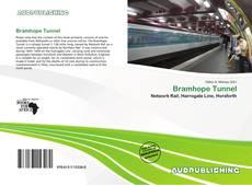 Capa do livro de Bramhope Tunnel