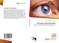 Bookcover of Entoptic Phenomenon