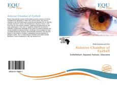 Bookcover of Anterior Chamber of Eyeball