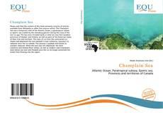 Bookcover of Champlain Sea