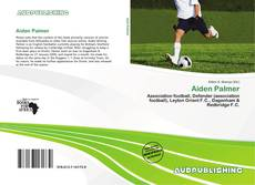 Bookcover of Aiden Palmer