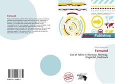 Bookcover of Femund