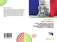 Bookcover of Michal Meduna