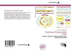 Borítókép a  Cochrane/Pueyrredón Lake - hoz