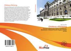 Château d'Antoing kitap kapağı