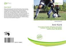 Bookcover of Amir Karić