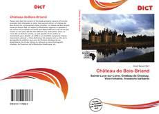 Couverture de Château de Bois-Briand