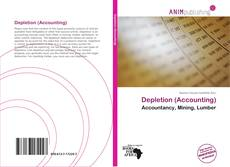 Buchcover von Depletion (Accounting)