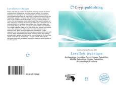 Bookcover of Levallois technique