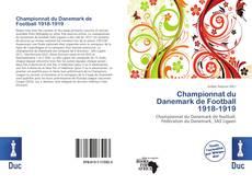 Bookcover of Championnat du Danemark de Football 1918-1919