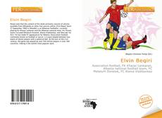 Bookcover of Elvin Beqiri