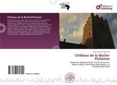 Portada del libro de Château de la Roche-Pichemer
