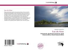 Lac de Gras的封面