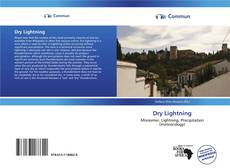 Bookcover of Dry Lightning