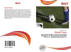 Bookcover of David Town