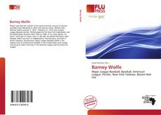 Barney Wolfe kitap kapağı