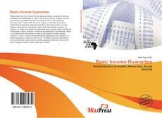 Bookcover of Basic Income Guarantee