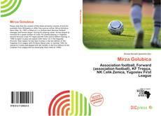 Mirza Golubica kitap kapağı