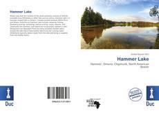 Capa do livro de Hammer Lake
