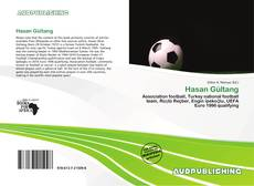 Bookcover of Hasan Gültang