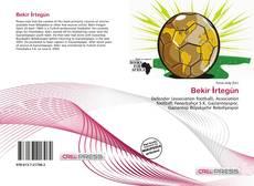 Bookcover of Bekir İrtegün