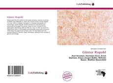 Bookcover of Günter Ropohl