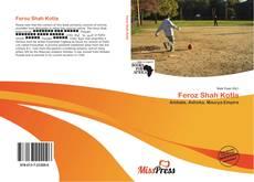 Bookcover of Feroz Shah Kotla