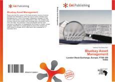 Bookcover of Bluebay Asset Management