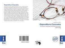Bookcover of Expenditure Cascades