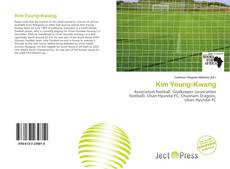 Bookcover of Kim Young-Kwang