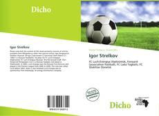 Bookcover of Igor Strelkov
