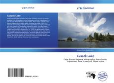 Bookcover of Cusack Lake